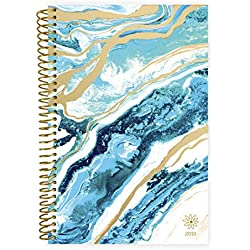 "bloom daily planners 2019 Calendar Year Day Planner - Passion/Goal Organizer - Monthly and Weekly Dated Agenda Book - (January 2019 - December 2019) - 6"" x 8.25"" - Geode"