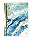 """bloom daily planners 2019 Calendar Year Day Planner - Passion/Goal Organizer - Monthly and Weekly Dated Agenda Book - (January 2019 - December 2019) - 6"""" x 8.25"""" - Geode"""