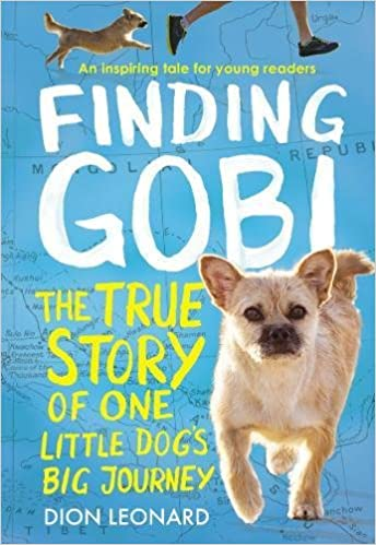 Image result for finding gobi