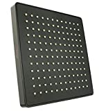 Vida Alegría Spashower RAIN 8-Inch Square Soft Rain 2.5 GPM Shower Head (Oil Rubbed Bronze)