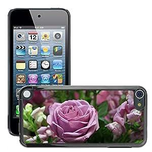 Print Motif Coque de protection Case Cover // M00238966 Color de rosa romántico plantas de // Apple ipod Touch 5 5G 5th 6 6G 6th