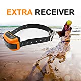 Depps Wireless Dog Containment System with Rechargeable Transmitter and Rechargeable Collar Receiver - Safe & Easy Install WiFi Radio Electric Dog Fence (Extra Collar Orange)
