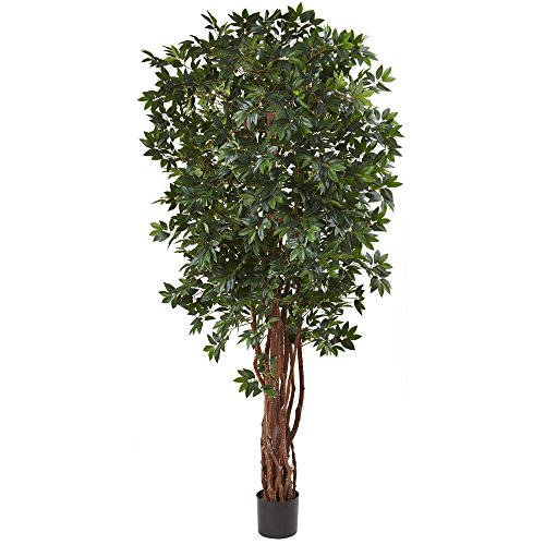 Nearly Natural Lychee Silk Tree, 7.5'