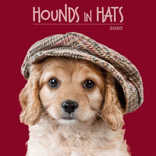 Hounds in Hats 2020 Calendar