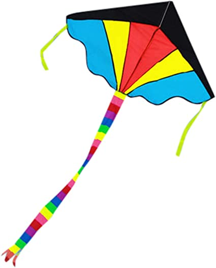Transser Colorful Rainbow Flying Fish Kite Easy Flyer Toys for Children Kids Outdoor Fun Flying Games And Sports Activities Black