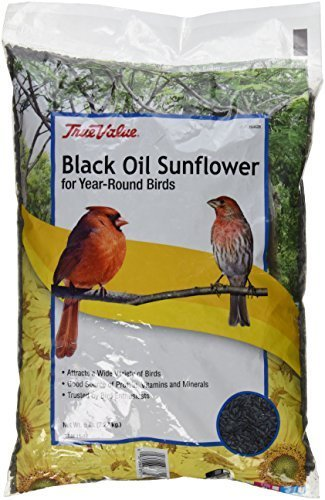 jrk seed & turf supply b110005t True Value, 5 LB, Black Oil Sunflower Bird Seed by Jrk Seed & Turf Supply