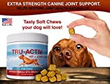 All-Natural-Hip-Joint-Care-for-Dogs-Improves-Mobility-Hip-Dysplasia-Glucosamine-MSM-Chondroitin-Turmeric-Antioxidants-cGMP-Certified-Made-in-USA-120-Savory-Soft-Chews