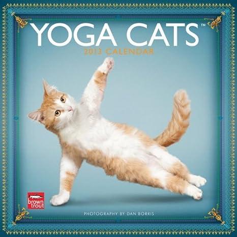 (12x12) Yoga Cats - 2013 Wall Calendar
