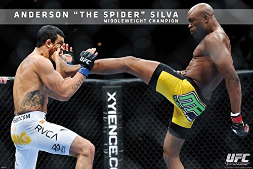 Anderson Silva The Spider UFC Middleweight Champion Poster 3