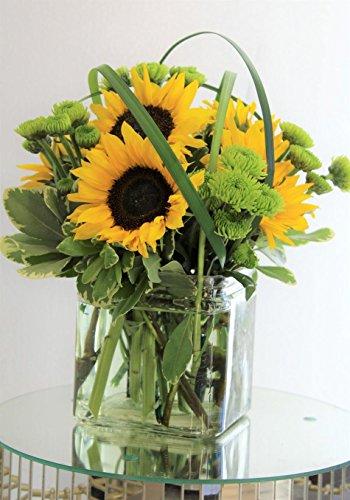 Sunflower Splendor Bouquet - Fresh Flowers Hand Delivered in Charlotte -