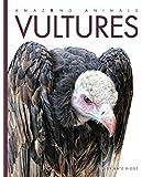 Amazing Animals: Vultures