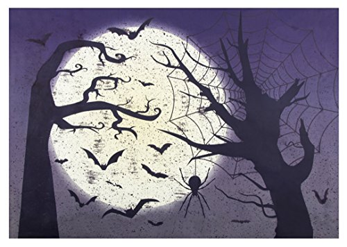 Photo Backdrop - Party Photo-Booth Background with Moon and Bats Design, Halloween Photography Background for Studio, Birthday Party, Haunted House, 5 x 7 Feet, 60 x 84 Inches -