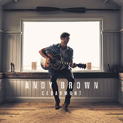 Landslide [feat. Crissie - Andy Brown