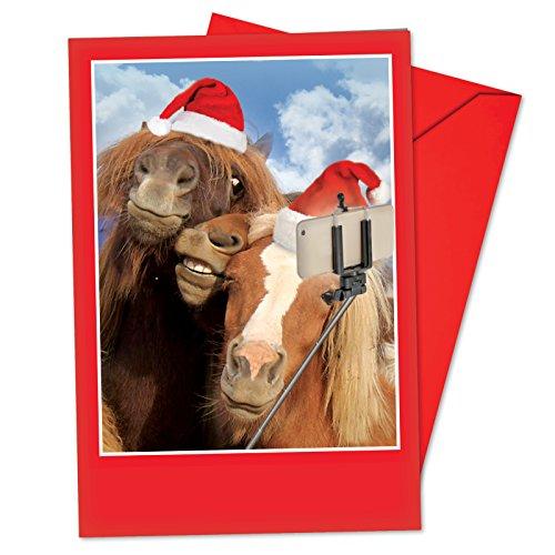 Wacky Christmas Pack - 1