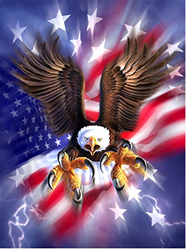 LIPHISFUN Diamond Painting Kits for Adults Full Drill Square Resin Rhinestone Embroidery Unfinished Cross Stitch Home Decor Gift Eagle flag(30x40cm) (Flag Eagle Embroidery)