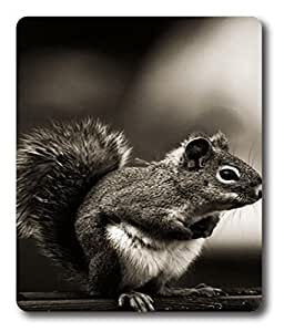 designer mouse pad Vintage Squirrel Animal PC Custom Mouse Pads / Mouse Mats Case Cover