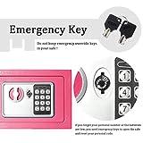 Lovndi Electronic Security Safe Box, 0.17 Cubic
