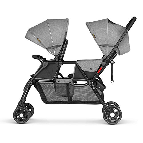 Buy double stroller with infant car seat