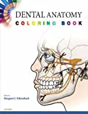 Dental Anatomy Coloring Book (08) by Saunders [Paperback (2007)]