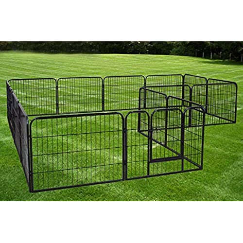 Outdoor Dog Kennel For Sale Amazon Com