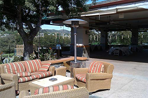 Patio Comfort Model PC02SS Liquid Propane Portable Patio Heater with Stainless Steel Finish and Push Button Ignition ()