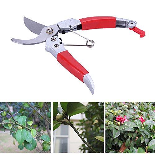 - TOLOVI Metal Handle Pruning Shears Garden Bypass Secateurs Pruners and Ergonomic Flower Cutter Grafting Tool Scissors Trimmer Cutter NEW
