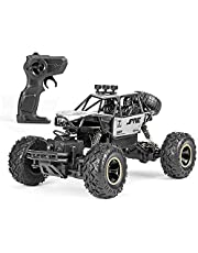 Mainstayae 1/16 Off-road Buggy Alloy RC Car 2.4GHz 4WD 15km/h High Speed Climbling Car RTR