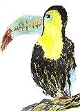 LARGE BEAK TOUCAN BIRD PRINT PRINTED ON PREMIUM 100% RAG (COTTON) WHITE 140LLB ARCHIVAL PAPER