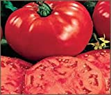 25 Seeds Giant!! Beefsteak Tomatoes!! Huge and Great Tasting..