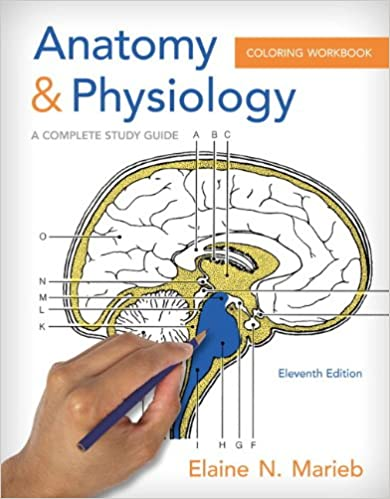 Anatomy Physiology Coloring Workbook A Complete Study Guide 11th Edition