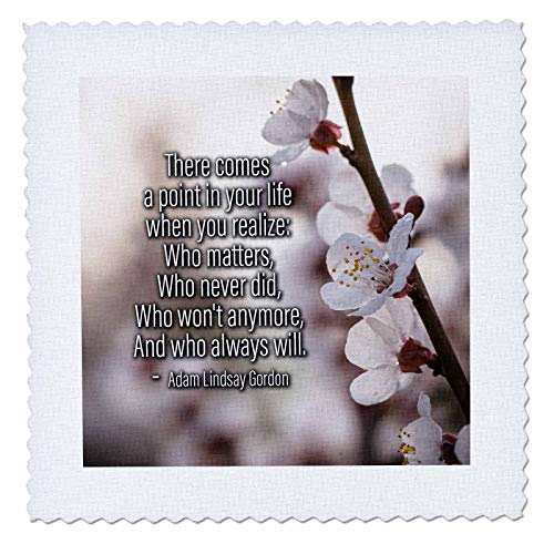 3dRose Alexis Design - Quotes About Life - Sakura Cherry Flowers. Adam Lindsay Gordon Quote There Comes a Point - 10x10 inch Quilt Square (qs_302690_1)