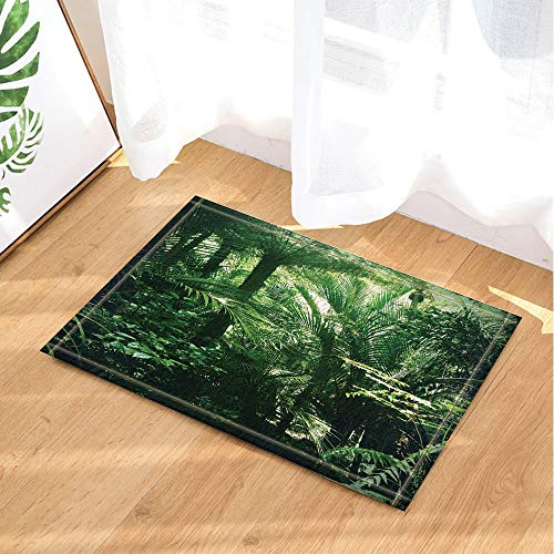 Rainforest Decor Lush Green Foliage in Tropical Jungle Bath Rugs Non-Slip Doormat Floor Entryways Outdoor Indoor Front Door Mat Kids Bathroom Accessories