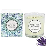 AromusBloom Natural Essential Oils Scented Candle Gift, 100% Eco-Friendly Soy Wax Aromatherapy Candle, Vanilla/Geraniums/Lemon/Jasmine/Lavender etc. 10 Scents(Lavender)