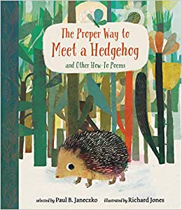 Image result for the proper way to meet a hedgehog
