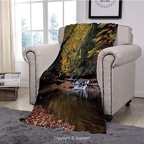 "BeeMeng Printing Blanket Coral Plush Super Soft Decorative Throw Blanket,Nature,Small Waterfall Brandywine Creek National Park Ohio Autumn Fallen Leaves,Yellow Green Redwood(59"" x 59"")"