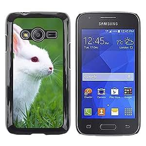 TopCaseStore / la caja del caucho duro de la cubierta de protección de la piel - Rabbit Cute White Blue Eyes Grass Nature - Samsung Galaxy Ace 4 G313 SM-G313F