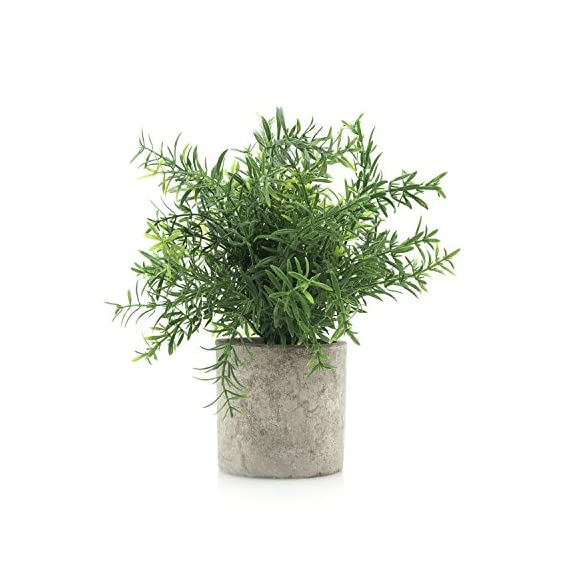 """Velener Mini Potted Plastic Fake Green Plant for Home Decor (Bamboo Leaves) - This plant is cute but mini. The Diameter of product: 7 """" Height:7.5 """" (from top tip of the plant to the bottom of the pot) Lifelike potted plants are perfect additions to a wedding and party decor, centerpieces, indoor use, shop, office or home decor. Flowers and Leaves are made of plastic, easy to maintain. - living-room-decor, living-room, home-decor - 51ORQKNNomL. SS570  -"""