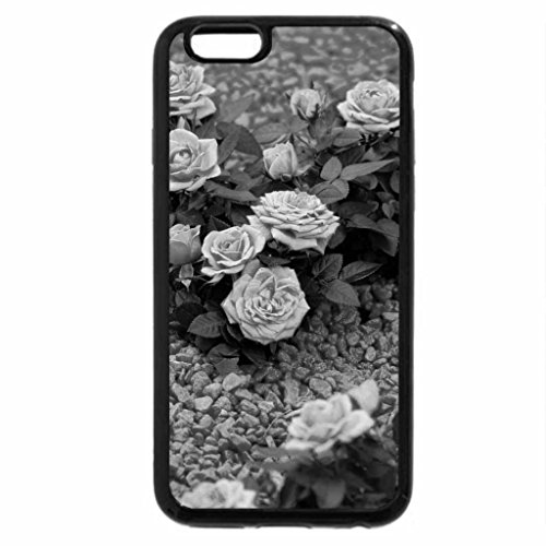 iPhone 6S Case, iPhone 6 Case (Black & White) - Of RoseS