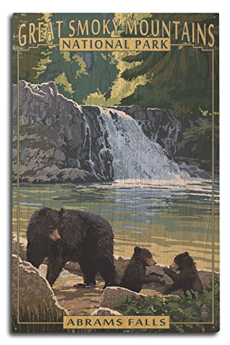 (Lantern Press Great Smoky Mountains National Park, Tennesseee - Abrams Falls (10x15 Wood Wall Sign, Wall Decor Ready to)