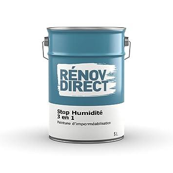 Humidité D'imperméabilisation En 1Peinture Stop Rénovdirect 3 tdrshQC