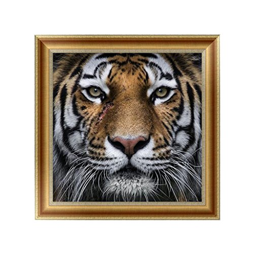 Full Diamond Rhinestone Tiger (Wivily Tiger Face Full Drill 5D DIY Diamond Painting Rhinestone Pictures Of Crystals Embroidery Kits Arts, Crafts & Sewing Cross Stitch)