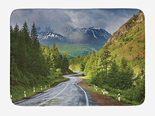Woodland Bath Mat, Mountain Landscape Road Cloudy Sky Pine Trees Forest Summer Rainy Day Scene, Plush Bathroom Decor Mat with Non Slip Backing, 31.5 X 19.7 Inches, Green Gray Brown]()