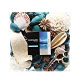 Qingbei Rina Gift Ocean Scent Decorative Potpourri Bag, Bowl Filler and vase Filler, 10.2 oz.Turquoise Blue