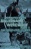 Dominated By The Billionaire Werewolf, Part 1 (Gay BDSM Love Stories Book 5)