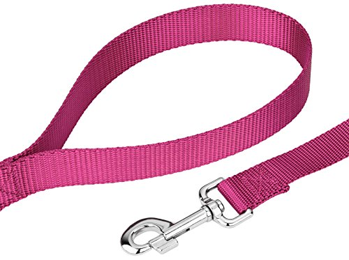 Image of Country Brook Petz | Vibrant 21 Color Selection | Nylon Dog Leash (Rose, 1 inch width, 4 Foot)