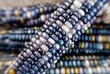 gem corn - Sapphires and Pearls Glass Gem Cherokee Indian Corn Heirloom Premium Seed Packet + More