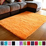 PAGISOFE Super Soft Shaggy Accent Area Rug Orange Plush Rugs Carpet for Living Room Bedrooms Kids Nursery Home Decor Fluffy Shag Dining Floor Carpets Silky Washable Fuzzy Fur Rug 5x4 Feet (Orange)