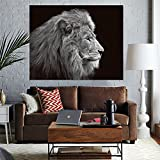QCWN Wild Animal Tapestry African Lion Wall Hanging Africa Forest Animals Theme 3D Print Nature Home Decorations for Living Room Bedroom Dorm Decor Art (1, 78Wx59L)