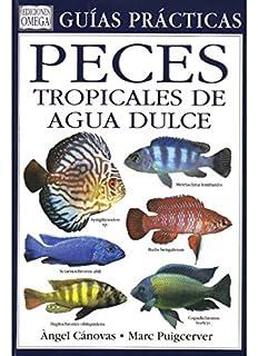 PECES TROPICALES DE AGUA DULCE (GUIAS DEL NATURALISTA-PECES-MOLUSCOS-BIOLOGIA MARINA