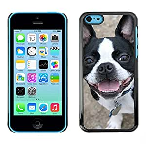 Be Good Phone Accessory // Dura Cáscara cubierta Protectora Caso Carcasa Funda de Protección para Apple Iphone 5C // Boston Terrier Bull French Bulldog Canine